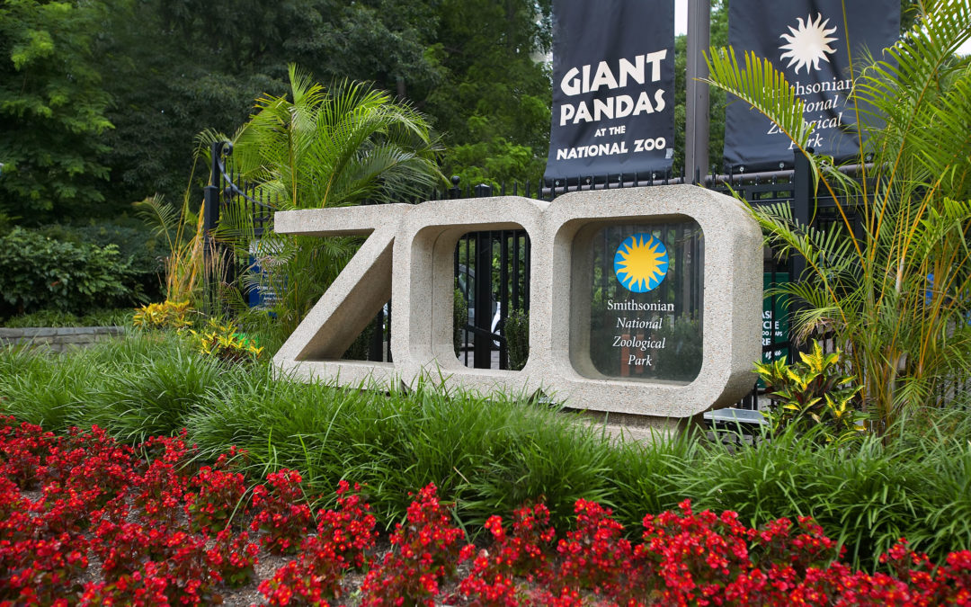Aug 30th – National Zoo