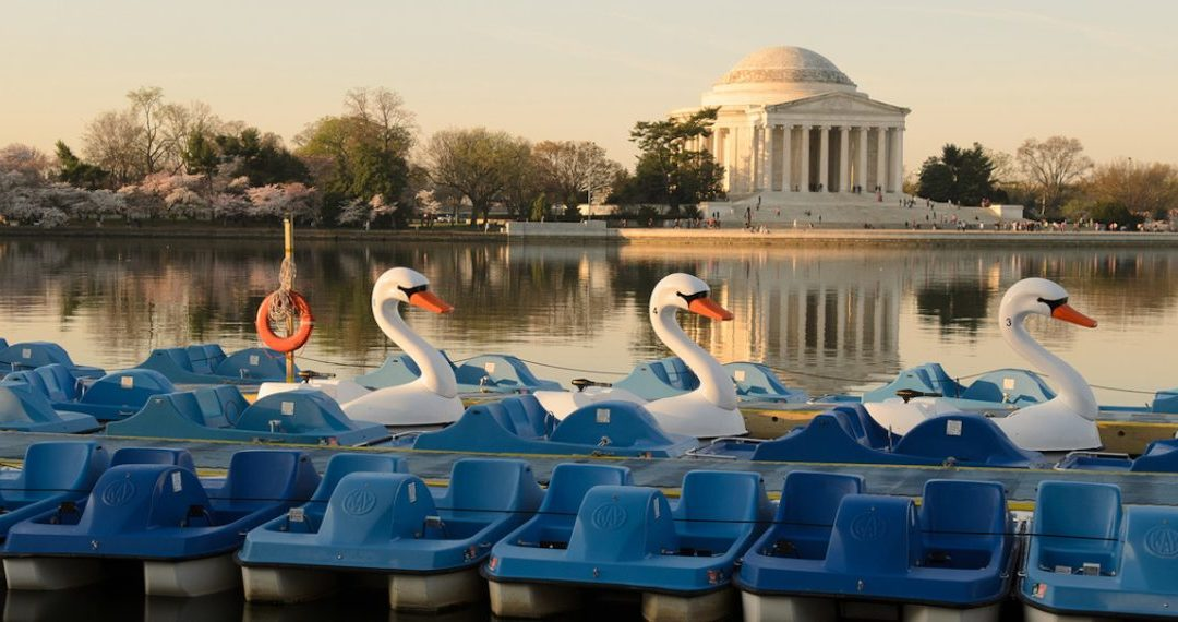 August 8th – Boat paddling at the Tidal Basin